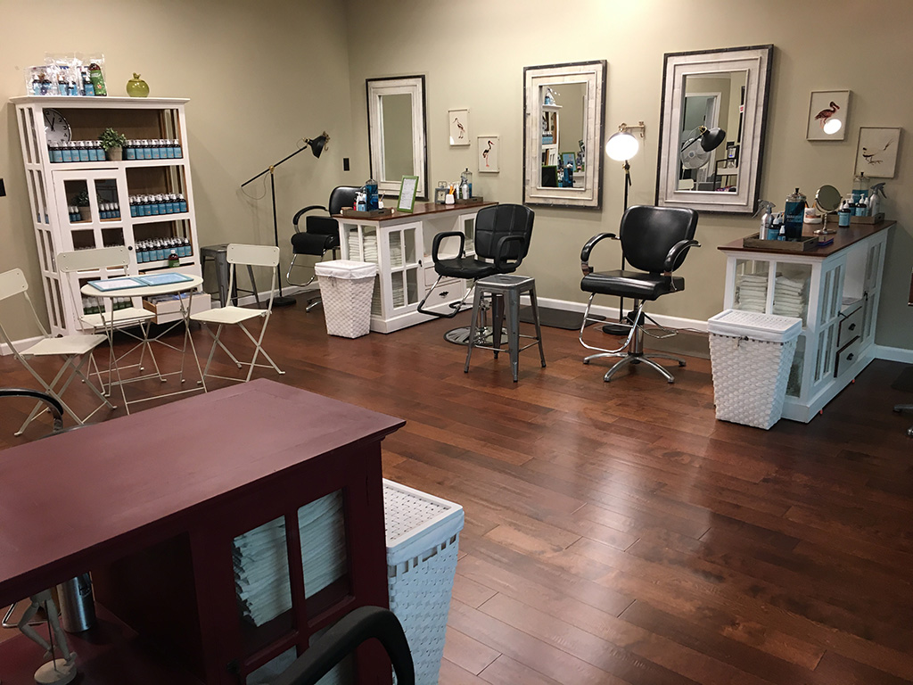 Burlingame Lice Removal Salon Mobile Home Treatment Options