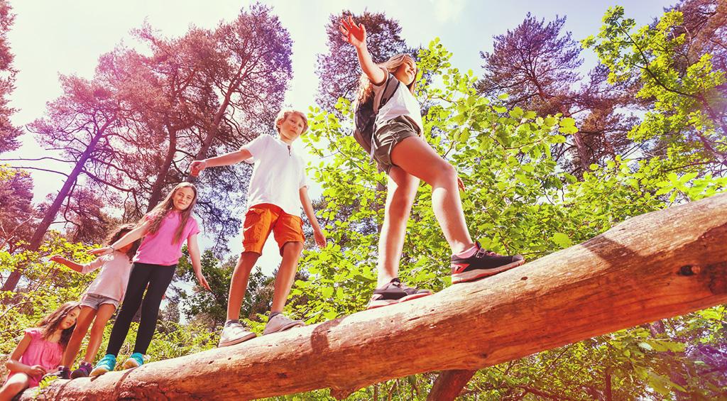 Summer Camp Head Lice Preparedness (Tips for Prevention)