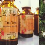 Tea Tree Oil for Lice: Prevention vs. Treatment